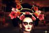 Geisha roxaane