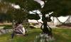 CJ Swing Cherry Blossom + Tree Set - copy + mody