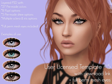 .ID. User Licensed Template #5 with download link & full perm mesh eyes