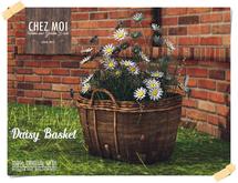 Daisy Basket ♥ CHEZ MOI