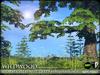 Heart   wildwood   horse chestnut   a1