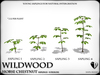Heart   wildwood   horse chesnut   ref1