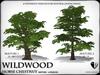 Heart   wildwood   horse chesnut   ref3