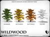 Heart   wildwood   horse chesnut   ref5