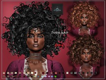 *dafnis fat pack hair siren afro Demo