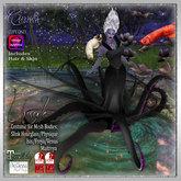CB~Ursula (box)