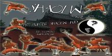 B3WTC - Fightsystem - Shaolin-Kung Fu