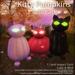 Kitty pumpkins solid