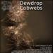 [DDD] Dewdrop Cobwebs - Twinkling Mesh Spider Webs