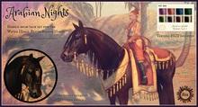 Jinx : Arabian Nights Tack Set - Wear to Unpack