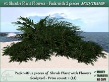 v1 Shrubs Plant Flowers bush Tropical Garden. 1 prim. Pack 2 pcs. M/T