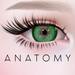 ANATOMY -  Circle Lens - Green