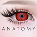 ANATOMY - Circle Lens - Red