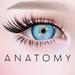 ANATOMY -  Circle Lens - Light Blue