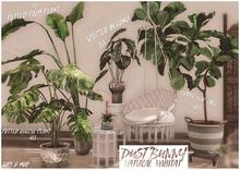 dust bunny . natural habitat . fatpack . boxed . rez & touch
