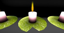 Lily Pad Candle *** FULL PERM *** (Boxed)