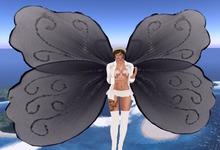 NSB Wings black