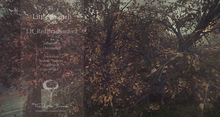 Red BradFord Tree v2 Animated 4 Seasons