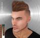 FaiRodis Artur hair dark blonde+mocha pack