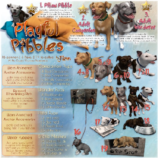 JIAN Playful Pibbles BOX 17. Study Pupper