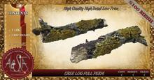 ALESTA << Mesh Tree Log Full Perm