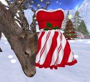 Nixxi Fashions - Ruffled Christmas Dress GROUP GIFT