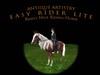 RIDING HORSE - CHESTNUT Easy Rider Lite Riding Horse