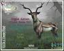 Teegle Deer MOD