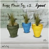 Kyoot Home - Bright Flower Pots II