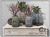 Home jars deco set