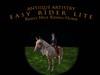 RIDING HORSE -PALOMINO Easy Rider Lite Riding Horse