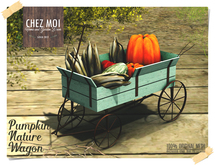 Pumpkin Nature Wagon ♥ CHEZ MOI