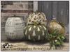 "Chrumpkins Earthy - ""The Holiday Pumpkins"""