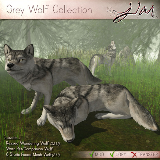 JIAN :: Grey Wolf Collection