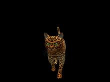 Animated Mesh Cat (Wander,Companion,Shoulder,Animated)Demo