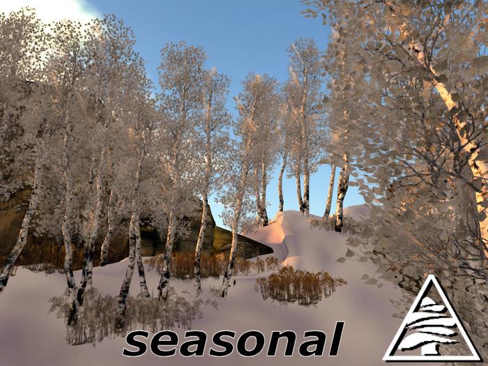 Young Birch group SEASONAL C/M 3LI+fern 1LI