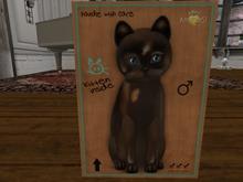KittyCatS Box - New Born Kitten Male