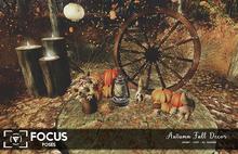 [ Focus Poses ] Autumn Fall Decor
