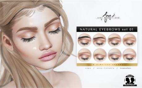 Just Magnetized - Natual Brows - set 01 BOM