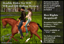 ~*WH*~ Riding Horse Double Riding Systems