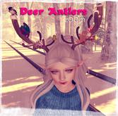 zOOm - Deer Antlers
