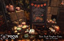 [ Focus Poses ] Fresh Farm Pumpkin crates