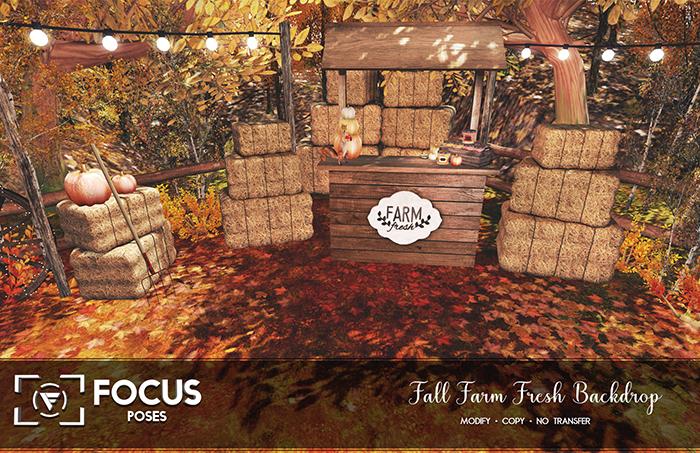 [ Focus Poses ] Fall Farm Fresh Backdrop