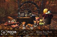 [ Focus Poses ] Autumn Farm Decor