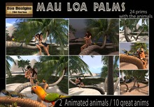 PROMO  300LOFF!! Mau Loa Palms  with animations and with animated animals -  palm tree
