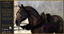 Cheval D'or - WHRHClyde - Joan Tackset. (Wear me to unpack)