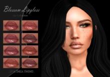 [KULA] Blossom Lipgloss . Fatpack .