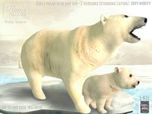 Polar bear, cub