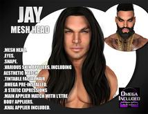 ::LV:. Jay Mesh Head