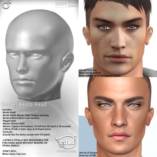 CATWA HEAD Daniel